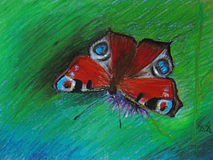 Бабочка масляной пастелью. Ярмарка Мастеров - ручная работа, handmade.