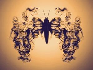 Бомбикс мори, или Почти детективная история о шелкопряде. Ярмарка Мастеров - ручная работа, handmade.