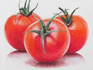 Рисуем сочные помидорки пастелью. Ярмарка Мастеров - ручная работа, handmade.