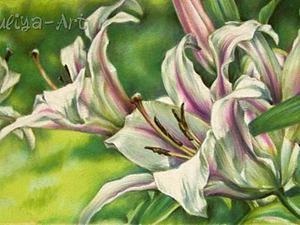 Мастер-класс: рисуем белые лилии сухой пастелью. Ярмарка Мастеров - ручная работа, handmade.