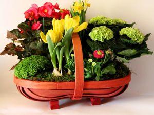 Свежие цветы, Аранжировки из ПЕРВОЦВЕТОВ к 8 марта на заказ. Ярмарка Мастеров - ручная работа, handmade.