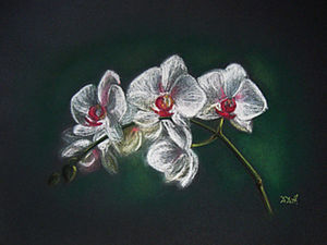 Tutorial on How to Paint Orchids with Pastel. Livemaster - handmade
