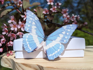 Видеообзор Бабочка Киприда Украшение из шёлка. Ярмарка Мастеров - ручная работа, handmade.
