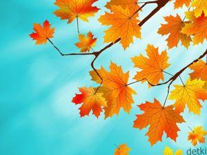 Конкурс коллекций «Вот и осень !». Ярмарка Мастеров - ручная работа, handmade.