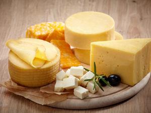 Путешествие по Франции с твердым сыром. Ярмарка Мастеров - ручная работа, handmade.