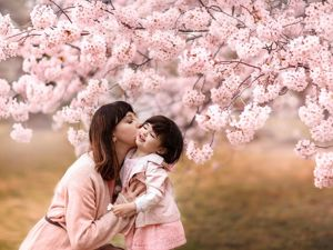 Ханами или праздник цветения сакуры. Ярмарка Мастеров - ручная работа, handmade.