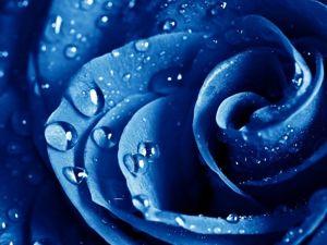 Как синий цвет влияет на нашу жизнь?. Ярмарка Мастеров - ручная работа, handmade.