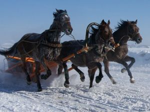 Вот мчится тройка почтовая По Волге-матушке зимой (русская народная песня). Ярмарка Мастеров - ручная работа, handmade.