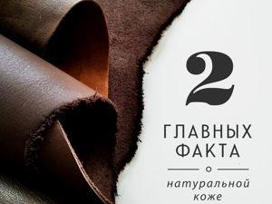 2 главных факта о натуральной коже. Ярмарка Мастеров - ручная работа, handmade.