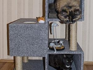 Строим кошкин дом за пару дней. Ярмарка Мастеров - ручная работа, handmade.