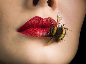 Видео о настройках стиля Рэйки пчёл. Ярмарка Мастеров - ручная работа, handmade.