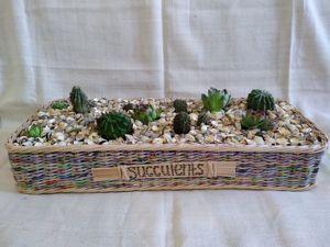 Про кактусы и не только. Ярмарка Мастеров - ручная работа, handmade.