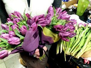 Тюльпаны сортовые попугайнные с 50% скидкой. Акция на 8-9 марта. Ярмарка Мастеров - ручная работа, handmade.