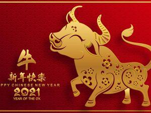 Китайский Новый Год. Ярмарка Мастеров - ручная работа, handmade.