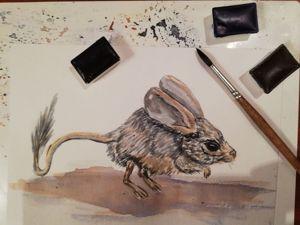 Рисуем тушканчика акварелью. Ярмарка Мастеров - ручная работа, handmade.
