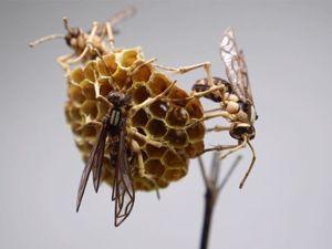 Бамбуковые насекомые Noriyuki Saitoh. Ярмарка Мастеров - ручная работа, handmade.