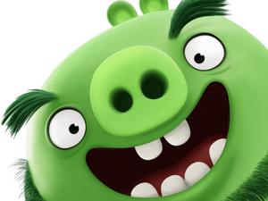 Видео мастер-класс: лепим Свина Леонарда из мультфильма «Angry Birds в кино». Ярмарка Мастеров - ручная работа, handmade.