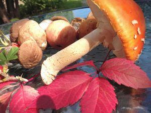 Осень взяла на кисть шафран. Ярмарка Мастеров - ручная работа, handmade.