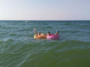 Друзья! Море шлёт вам всем привет!!! И ждёт каждого!!!. Ярмарка Мастеров - ручная работа, handmade.