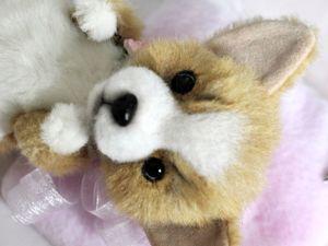 Корги Долли. Тедди щенок вельш корги пемброк. Собачка на заказ. Больше фото. Ярмарка Мастеров - ручная работа, handmade.