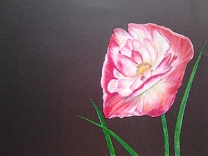 Мастер-класс: Розовый мак.. Ярмарка Мастеров - ручная работа, handmade.