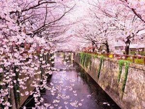 Япония — самая красивая улица. Ярмарка Мастеров - ручная работа, handmade.