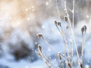 Как добавить снег на фотографию в Фотошоп. Ярмарка Мастеров - ручная работа, handmade.