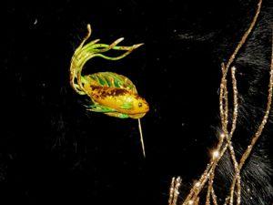 Создаем брошь золотая рыбка из полимерной глины. Ярмарка Мастеров - ручная работа, handmade.