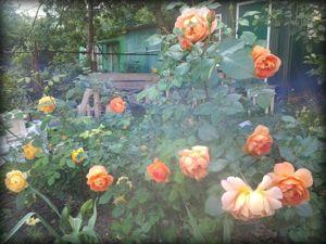 Прогулка по саду. Ярмарка Мастеров - ручная работа, handmade.
