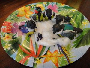 Лепим «Птичку-синичку» с детьми. Ярмарка Мастеров - ручная работа, handmade.