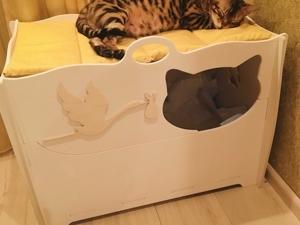 На клубничной грядке выросли котятки. Ярмарка Мастеров - ручная работа, handmade.