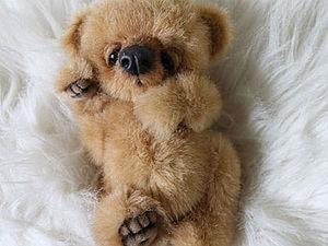 Взгляд на мишек Тедди глазами покупателя. Ярмарка Мастеров - ручная работа, handmade.