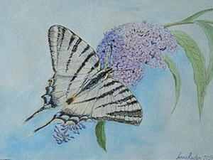 """Рисуем картину """"Бабочка Парусник подалирий"""". Ярмарка Мастеров - ручная работа, handmade."""