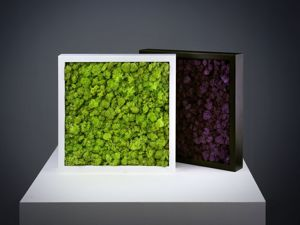 Стабилизированный мох. Самые часто задаваемые вопросы. Часть 2. Ярмарка Мастеров - ручная работа, handmade.