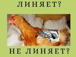 Экспертиза от Народный Лён. Ярмарка Мастеров - ручная работа, handmade.