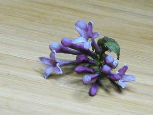 Опыты по созданию объемного гербария, или Как сохранить цветок в первозданном виде. Сушим цветы в вулканическом песке в СВЧ. Ярмарка Мастеров - ручная работа, handmade.