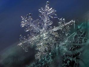Хранение ПУ и силиконов в холодное время года. Ярмарка Мастеров - ручная работа, handmade.
