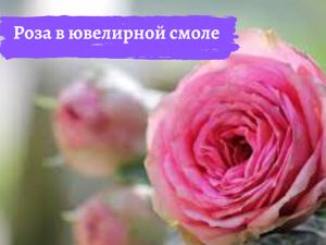 Сохраняем красоту. Роза в эпоксидной смоле. Ярмарка Мастеров - ручная работа, handmade.