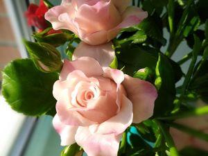 Кустовые розы ручной работы обзор работы. Ярмарка Мастеров - ручная работа, handmade.