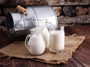 Где мы берем буйволиное молоко: единственная в России буйволиная ферма. Ярмарка Мастеров - ручная работа, handmade.