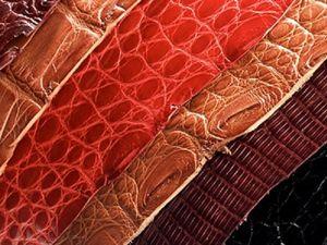 Каталог натуральной кожи для пошива сумок,рюкзаков и аксессуаров под заказ. Ярмарка Мастеров - ручная работа, handmade.