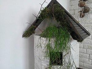 Мастерим декоративную башню для цветка рипсалиса. Ярмарка Мастеров - ручная работа, handmade.