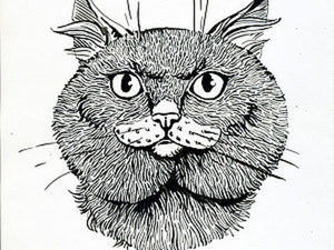 Tutorial on How to Draw a British Shorthair in Ink. Livemaster - handmade