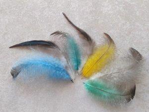 Как покрасить перья в домашних условиях. Ярмарка Мастеров - ручная работа, handmade.