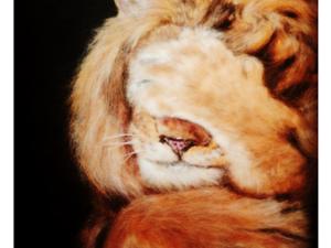 Лев из шерсти и шёлка. Ярмарка Мастеров - ручная работа, handmade.