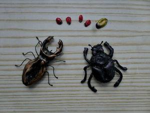 Видео мастер-класс: жуки из термо-клея. Ярмарка Мастеров - ручная работа, handmade.