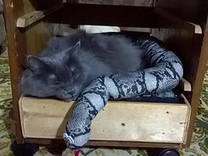 Как сделать лежанку для кошки из обрезков войлока. Ярмарка Мастеров - ручная работа, handmade.