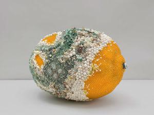 Не свежие фрукты Кэтлин Райан, к которым хочется прикоснуться. Ярмарка Мастеров - ручная работа, handmade.
