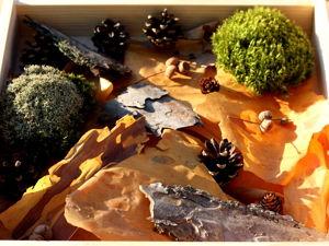 Природные материалы для поделок и флористики. Ярмарка Мастеров - ручная работа, handmade.