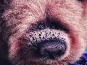 Новый медведь Звездная Пыль. Ярмарка Мастеров - ручная работа, handmade.